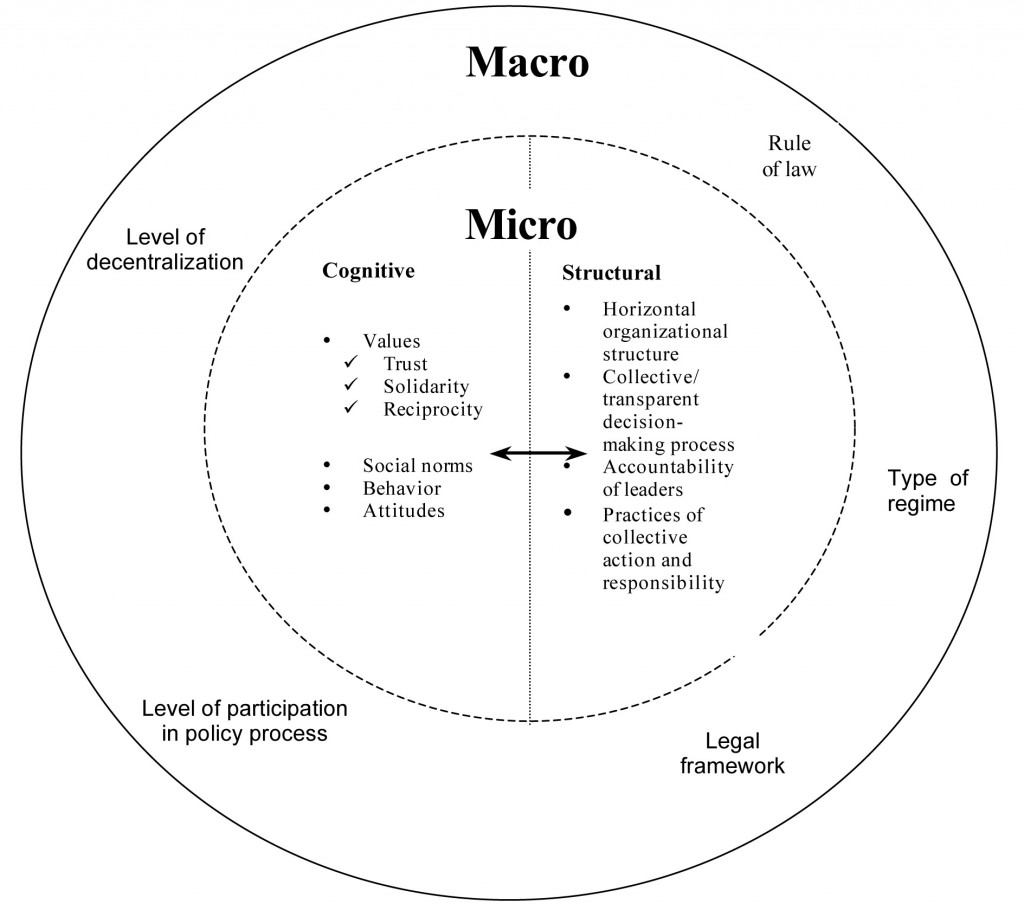 Conceptual Framework: Levels and Types of Social Capital