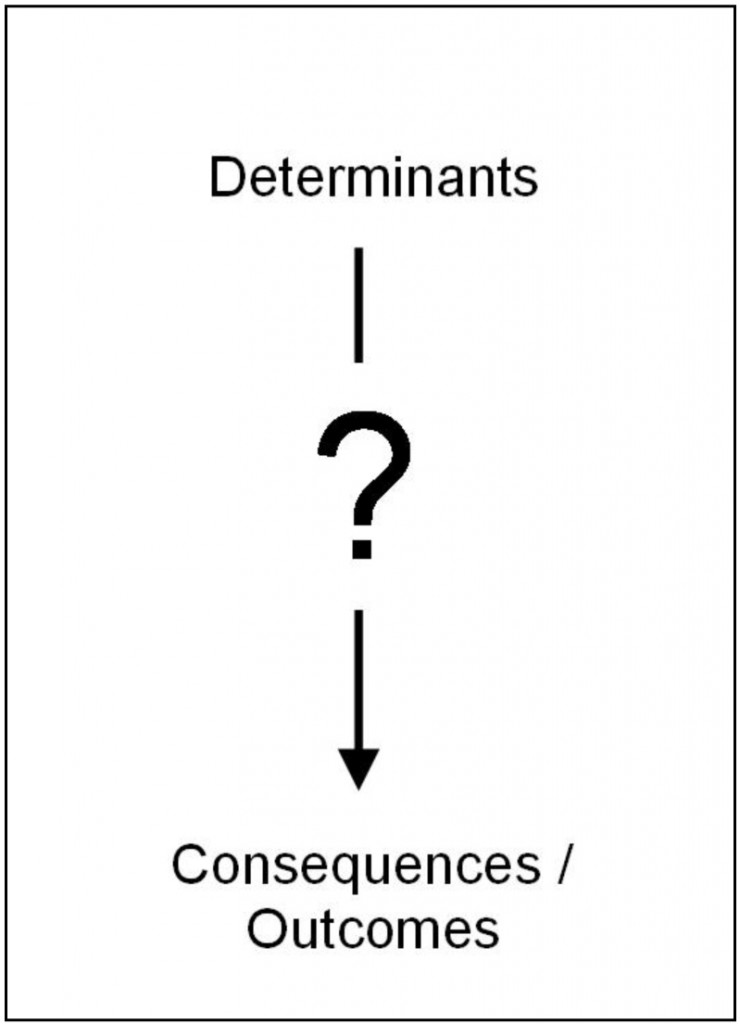 Current attempts to conceptualize social capital do not sufficiently account for the complexity between the determinants and consequences or outcomes of social capital.