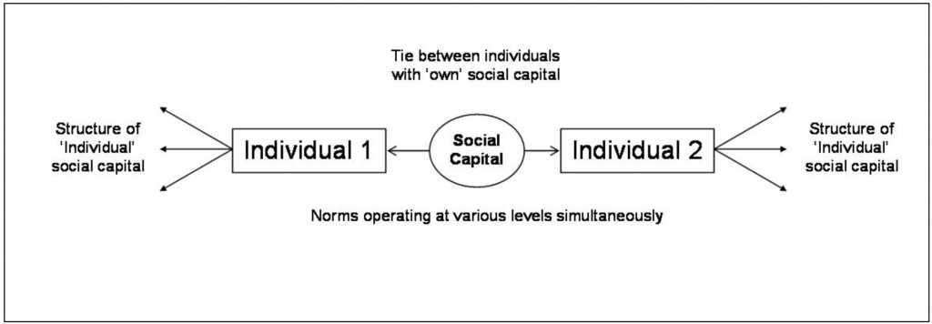Location of social capital at the individual level within the framework of micro level social capital interactions.