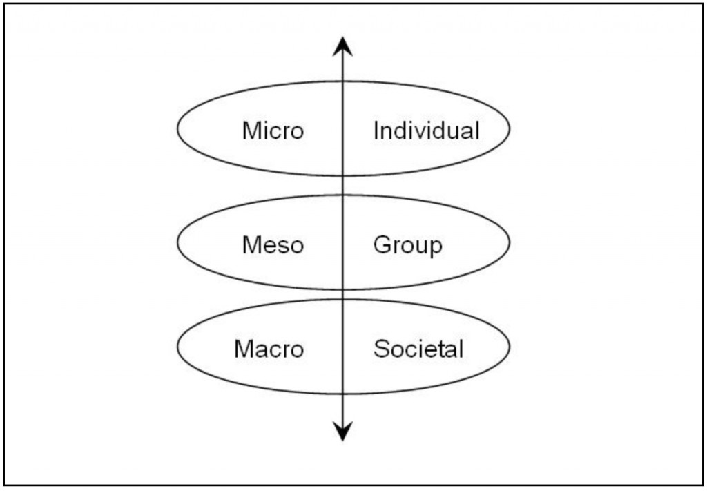Illustration of the interaction of levels at which social capital exists.
