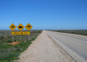 nullabor-road-1544301